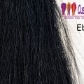 Ebony Tail Extensions