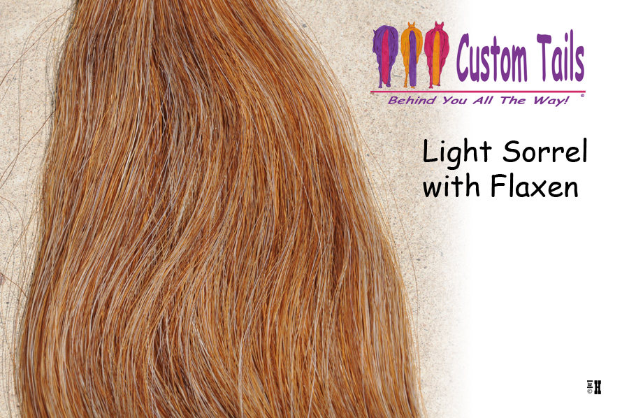 Light Sorrel With Flaxen Tail Extensions Custom Tails